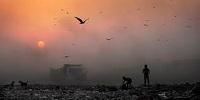 Bảo hiểm trách nhiệm bồi thường thiệt hại về môi trường