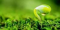 Chi ngân sách nhà nước cho bảo vệ môi trường