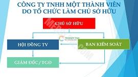 Cơ cấu tổ chức quản lý của Công ty TNHH một thành viên  do tổ chức làm chủ sở hữu