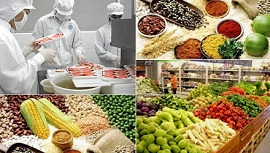 Điều kiện đầu tư kinh doanh cơ sở buôn bán thực phẩm