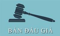 Khiếu nại, khởi kiện về việc đấu giá tài sản của Hội đồng đấu giá tài sản