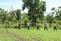 Mức chi trả và xác định số tiền chi trả dịch vụ môi trường rừng