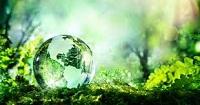 Nội dung quản lý nhà nước về bảo vệ môi trường