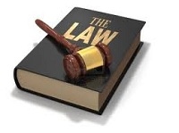 Quyền và nghĩa vụ của người tố cáo thi hành án dân sự