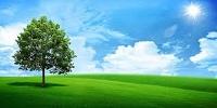 Thẩm quyền xác nhận hệ thống quản lý môi trường
