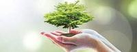Thu thập và quản lý thông tin môi trường