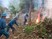 Trách nhiệm về phòng cháy và chữa cháy rừng của chủ rừng
