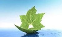 Tranh chấp về môi trường