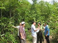 Trường hợp miễn, giảm tiền dịch vụ môi trường rừng