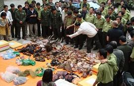 Vi phạm vệ sinh thú y trong kinh doanh động vật, sản phẩm từ động vật