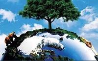 Xác nhận hệ thống quản lý môi trường
