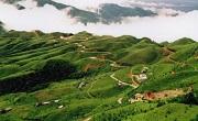Công ty luật uy tín tại huyện Cao Lộc, Lạng Sơn – Quý khách gọi 0909 763 190