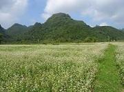Công ty luật uy tín tại huyện Hữu Lũng, Lạng Sơn – Quý khách gọi 0909 763 190