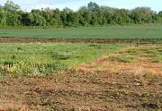 Bồi thường thiệt hại do việc trưng dụng đất gây ra