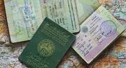 Các trường hợp được cấp thị thực rời