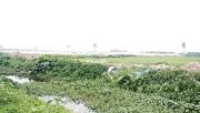 Các trường hợp thu hồi đất do vi phạm pháp luật về đất đai
