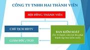 Cơ cấu tổ chức quản lý công ty TNHH hai thành viên trở lên