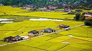 Có được xây dựng nhà ở trên đất nông nghiệp?