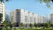 Có phải mua chung cư sau 50 năm sẽ bị mất trắng?