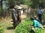 Nhiệm vụ và quyền hạn của công chức kiểm dịch thực vật