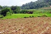 Đất không sử dụng trong bao lâu thì bị thu hồi?