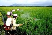 Điều kiện đối với tổ chức thực hiện khảo nghiệm thuốc bảo vệ thực vật