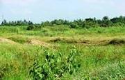 Lấn, chiếm đất chưa sử dụng tại khu vực nông thôn bị xử phạt như thế nào?