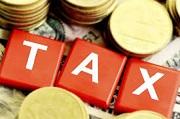 Nguyên tắc khai thuế đối với cá nhân kinh doanh nộp thuế khoán