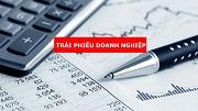 Nguyên tắc phát hành và sử dụng vốn trái phiếu doanh nghiệp