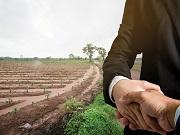 Nội dung văn bản thẩm định nhu cầu sử dụng đất