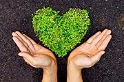 Quy định mới nhất về tài sản đóng góp thành lập quỹ xã hội, quỹ từ thiện