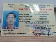 Sử dụng và quản lý giấy phép lái xe