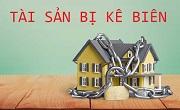 Tạm dừng việc chuyển quyền sở hữu tài sản của người phải thi hành án