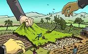 Thu hồi đất do chấm dứt việc sử dụng đất