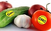 Vi phạm quy định về điều kiện bảo đảm an toàn thực phẩm đối với thực phẩm biến đổi gen, thực phẩm chiếu xạ