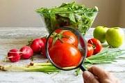 Tư vấn Luật an toàn thực phẩm – gọi 19006179