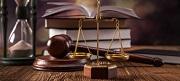 Tư vấn Luật tổ chức chính phủ - gọi 19006179