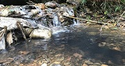 Vi phạm các quy định về ứng phó, khắc phục sự cố ô nhiễm nguồn nước