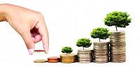 Vốn điều lệ ngân hàng hợp tác xã được quy định như thế nào?
